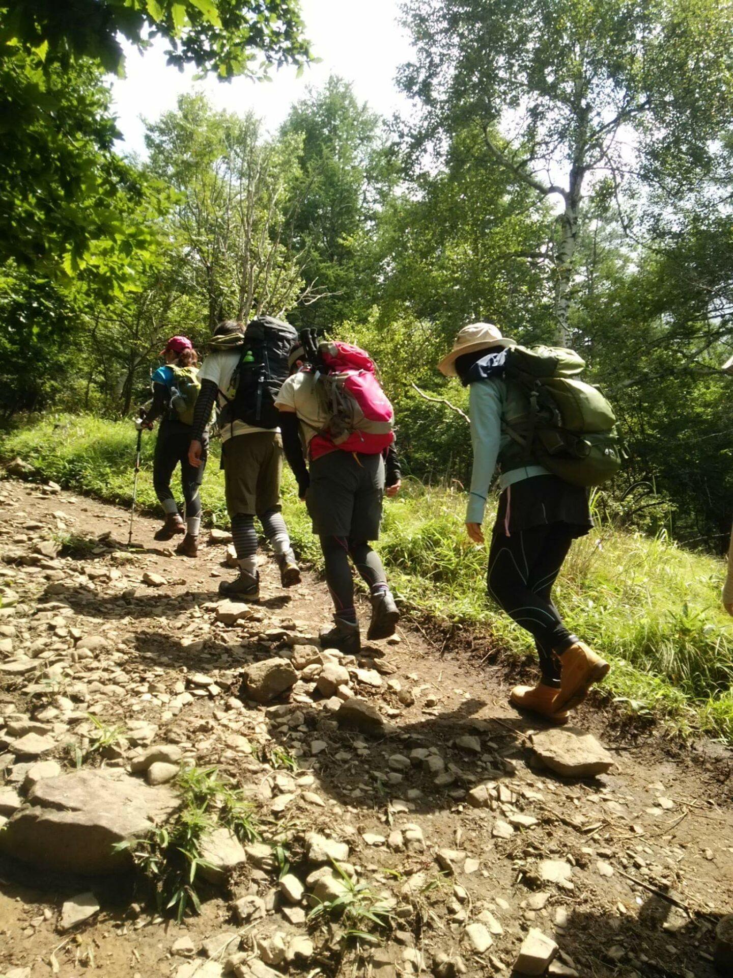 大菩薩嶺へ登りました。猛暑日でしたがさすがに標高2000mの山は涼しかったです。