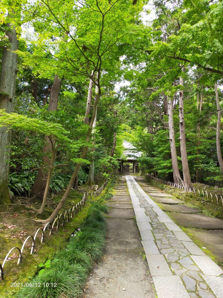 寿福寺の石畳